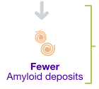 Fewer amyloid deposits.